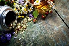 tea för glass växt- för horsetail för fokus för arvensekoppequisetum selektiv naturmedicin för avkok Arkivbild