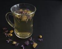 tea för glass växt- för horsetail för fokus för arvensekoppequisetum selektiv naturmedicin för avkok Royaltyfria Foton