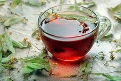 tea för glass växt- för horsetail för fokus för arvensekoppequisetum selektiv naturmedicin för avkok Kopp av lindte på en trätabe arkivfoto