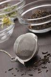 tea för infuserlivstid fortfarande Royaltyfria Foton