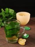 tea för ny mint Royaltyfria Bilder