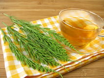 Tea with field horsetail Stock Photo