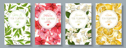 Tea flavour banners set. Vector popular tea flavour vertical banners set . Green tea, hibiscus, jasmine, lemon. Design for packaging, drink menu and tea products Royalty Free Stock Photos