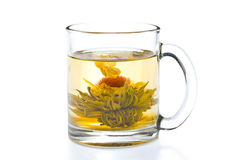 Tea with flower Stock Image