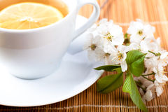 Tea with flower Royalty Free Stock Photography