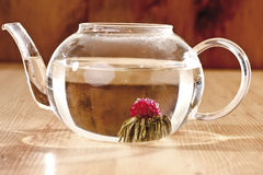 Tea Flower in tea glass Stock Images