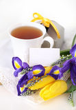 Tea with flowers and gift box Stock Images