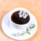 Tea with flowers of peppermint Royalty Free Stock Photography
