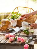 A Summertime Picnic with Tea. Tea and flowers and snacks on a summertime day makes for a great picnic royalty free stock photo