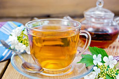 Tea from flowers of viburnum with napkin Royalty Free Stock Images
