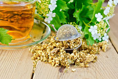 Tea from flowers of viburnum with strainer Stock Photos