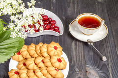Tea fresh biscuits with cherries. On the table in the morning on nature Royalty Free Stock Photos
