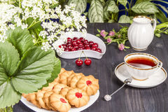 Tea fresh biscuits with cherries. On the table in the morning on nature Royalty Free Stock Photo