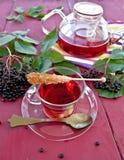 Tea with fresh elder berries Royalty Free Stock Photo