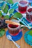 Tea with fresh elder berries Stock Photography