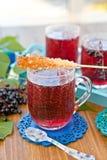 Tea with fresh elder berries Stock Image