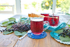 Tea with fresh elder berries Royalty Free Stock Photo