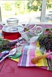 Tea with fresh elder berries Stock Images