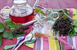 Tea with fresh elder berries Royalty Free Stock Image