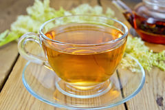 Tea from fresh meadowsweet in glass cup and teapot. Meadowsweet tea from a glass cup and teapot, fresh flowers of meadowsweet on a wooden boards backgroun Stock Images