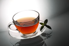Tea and fresh mint Stock Images