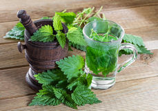 Tea with fresh nettles Stock Image