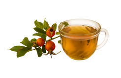 Tea with fresh rose hip berries  on a white background Stock Images