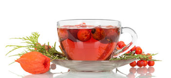 Tea From The Hips In A Cup Isolated On White Royalty Free Stock Images