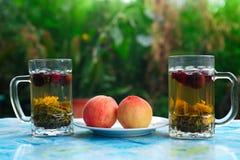 Tea and fruit royalty free stock photos