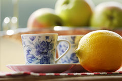 Tea and fruit  at picnic Royalty Free Stock Photography