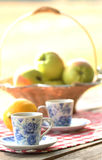 Tea and fruit  at picnic Royalty Free Stock Photo