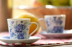 Tea and fruit  at picnic Stock Photos