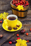 Tea with fruits of dog-rose Stock Photo