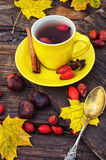 Tea with fruits of dog-rose Stock Photos