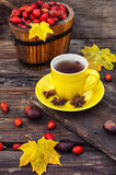 Tea with fruits of dog-rose Stock Images