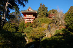 Tea garden. Japanese tea garden and Asian landscape stock photography