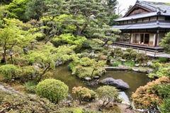 Tea garden in Japan Royalty Free Stock Image