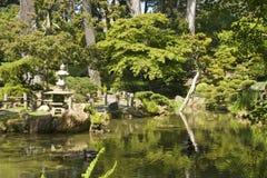 Tea Garden water reflection Stock Photo