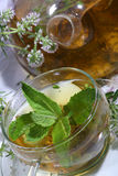 Tea from gathering of medicative herbs and mint in a transparen Royalty Free Stock Images