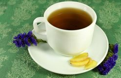 Tea with ginger royalty free stock photos
