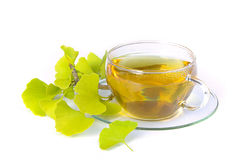 Tea ginkgo 01 Royalty Free Stock Photo