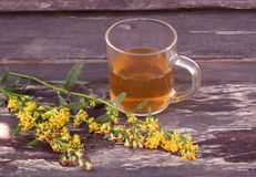 Tea in glass mug on wood background with goldenrod herb plant, Solidago virgaurea. Treats kidney and urinary tract diseases, impro. Tea in glass mug on wood stock image