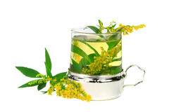 Tea from goldenrod Royalty Free Stock Photography