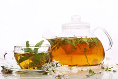 Tea from grasses and mint in a transparent teapot and a cup Stock Photography