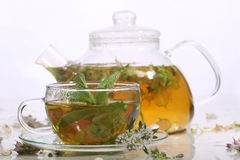 Tea from grasses and mint in a transparent teapot and a cup Royalty Free Stock Image