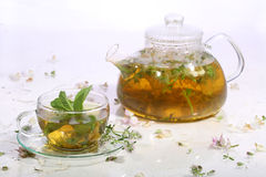 Tea from grasses and mint in a transparent teapot and a cup Royalty Free Stock Images