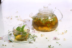 Tea from grasses and mint in a transparent teapot and a cup Royalty Free Stock Photography