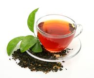 Tea and green leaf Stock Image