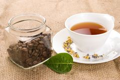 Tea, green leaf and glass coffee jar Royalty Free Stock Image