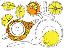 Tea hand draw set - teapot, cup and spoon with lemons, limes.  collection on white background Royalty Free Stock Photos